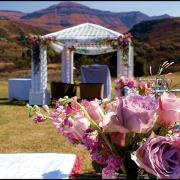flowers, gazebo, mountain, pink