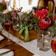 flowers, protea