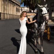 horse, wedding dress, wedding dress, wedding dress, wedding dress, wedding dress, wedding dress, wedding dress