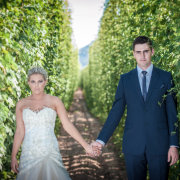 suit, wedding dress, vineyard