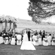 garden, wedding venue