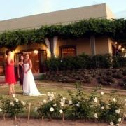 garden, wedding venue, winelands
