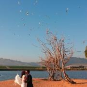 view, water, wedding venue