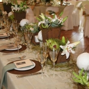 reception, venue, green and brown