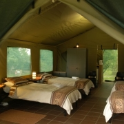 accommodation, guest accomodation, safari, tent