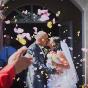 confetti, petals, veil