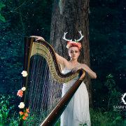 entertainment, harp, music