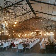 decor, fairy lights