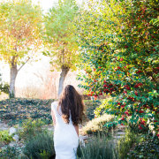 bride, garden