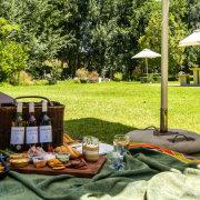 picnic, wine