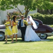 bride, bridesmaids, groom