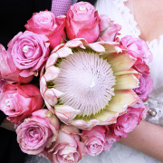 bouquet, flowers, pink, protea, roses