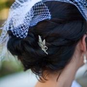 hairpins, headpiece