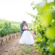 vineyard, wedding dress