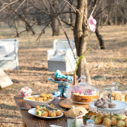 dessert, kitchen tea, seating, snacks