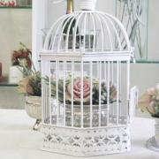 bird cage, birdcage