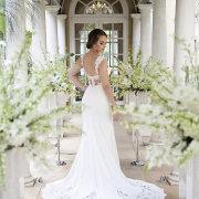 open back wedding dress, wedding dress, wedding dress, wedding dress, open back wedding dress