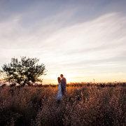 field, sunset