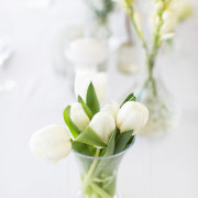 flowers, white