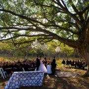 bride, ceremony, groom, safari
