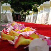 aisle, chair covers, flowers, petals