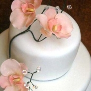 2 tier cake, floral accents, peach, two tier cake, white