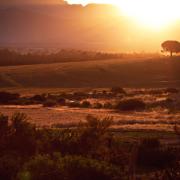 mountain, winelands