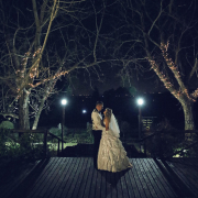 fairy lights, wedding dress