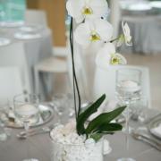 decor, flowers, table setting, venue, white