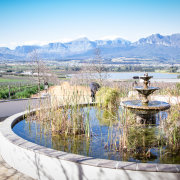fountain, mountain, winelands