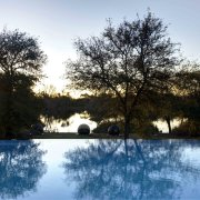 swimming pool, safari