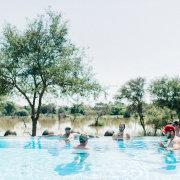 safari, swimming pool