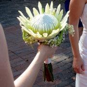 bouquet, protea