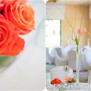 decor, flowers, orange
