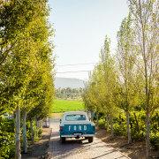 venue, winelands