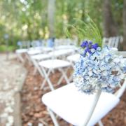 chair, flowers, forest, blue, hydrangeas