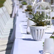 decor, outdoor reception, table setting, plant