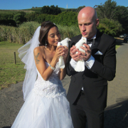 bride, doves, groom, white doves, suit, wedding dress