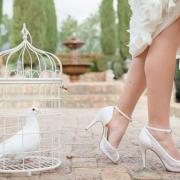 doves, shoes
