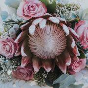 flowers, bouquet, protea
