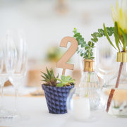 protea, table numbers