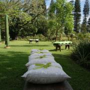 pillows, seating
