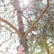 tree, venue